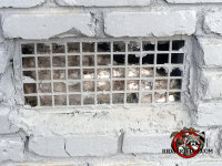 Mice got into the crawl space of an Atlanta home through a steel grate vent with a torn screen