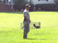 Man with a chicken in a trap in Conyers, Georgia