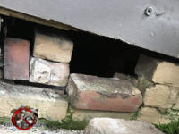 Missing and loose bricks in the foundation need to be repaired to keep opossums out of the crawl space of a house in Atlanta.