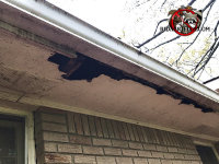 There is a big hole in the soffit panel of a house in Lilburn Georgia due to raccoon damage