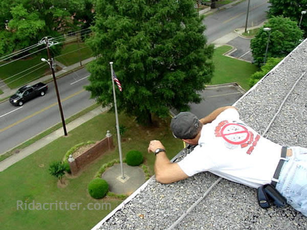 Bat Control Technician Lying On A High Roof Facing Down Performing And