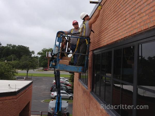 Atlanta Animal Damage Repair Amp Animal Proofing In Atlanta Marietta