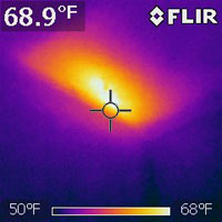 Thermal Imaging Picture of a Beehive Inside a Wall