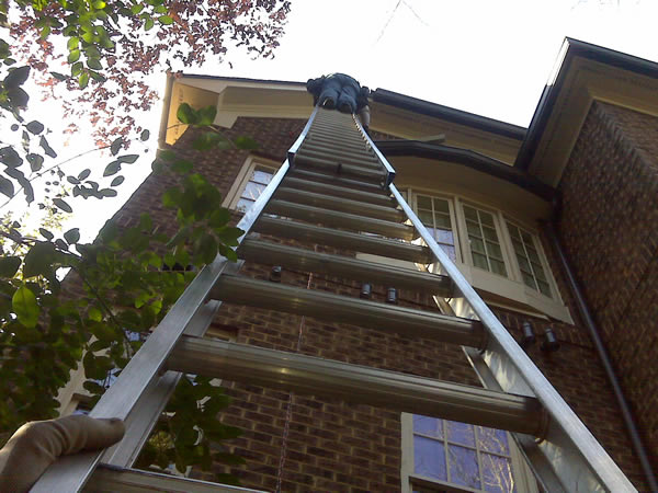 Dean on a ladder removing flying squirrels from an Atlanta home.
